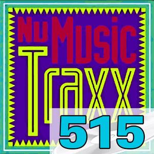 ERG Music: Nu Music Traxx, Vol. 515 (January 2020) album cover