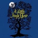 A Little Night Music (197... album cover