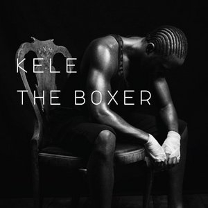 The Boxer album cover