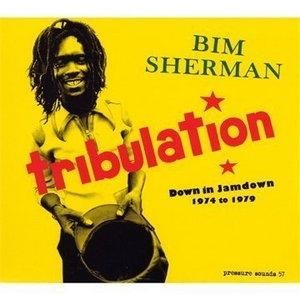 Tribulation: Down In Jamdown 1974-1979 album cover
