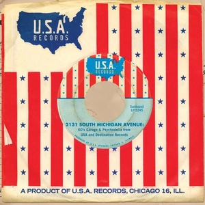 2131 South Michigan Avenue: 60's Garage And Psychedelia From USA And Destination Record album cover