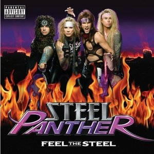 Feel The Steel album cover