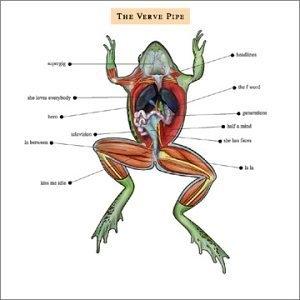 The Verve Pipe album cover