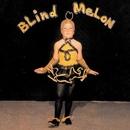 Blind Melon album cover