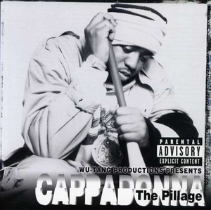 The Pillage album cover