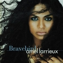 Bravebird album cover