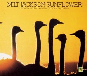 Sunflower album cover
