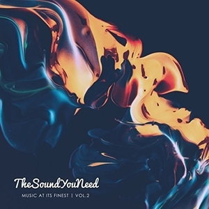 TheSoundYouNeed: Music at Its Finest Vol. 2 album cover