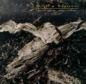 Plight And Premonition album cover