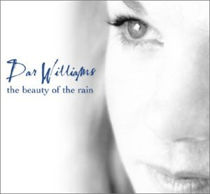 The Beauty Of The Rain album cover