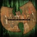 Return Of The Swarm, Vol.... album cover