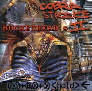 Cobra Strike II album cover