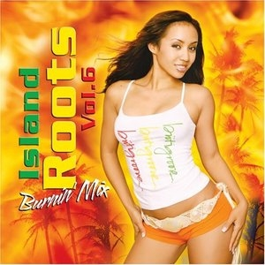 Island Roots, Vol. 6: Burnin' Mix album cover
