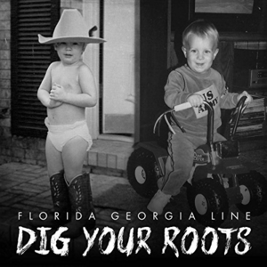 Dig Your Roots album cover