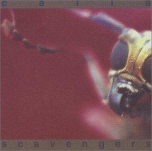 Scavengers album cover