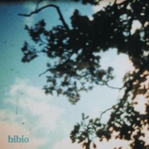 Fi album cover