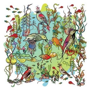 O'o album cover