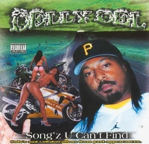 Song'z U Can't Find album cover
