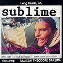 Robbin' The Hood album cover