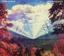 Innerspeaker (Limited Edi... album cover