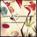Return of the Grievous An... album cover