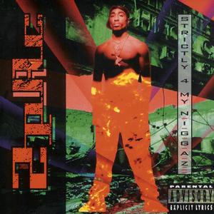 Strictly 4 My N.I.G.G.A.Z. album cover