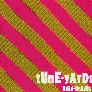 BiRd-BrAiNs album cover