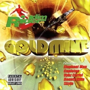 Riddim Rider, Vol. 10: Goldmine album cover