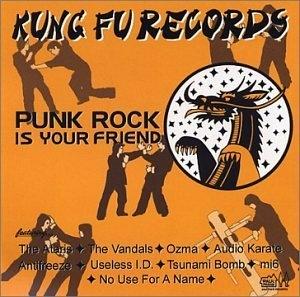 Punk Rock Is Your Friend album cover