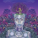 New Amerykah Part Two: Re... album cover
