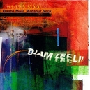 Djam Leeli: The Adventure... album cover