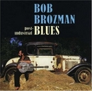 Post-Industrial Blues album cover