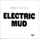 Electric Mud album cover