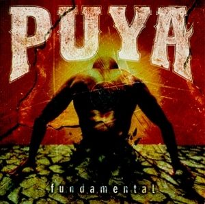 Fundamental album cover