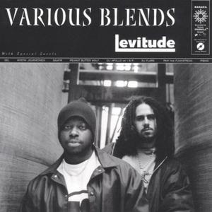 Levitude album cover