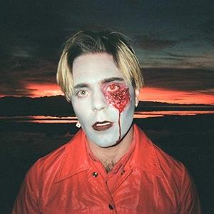 Gathering Swans album cover