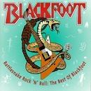 Rattlesnake Rock 'N' Roll... album cover