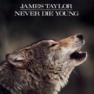 Never Die Young album cover