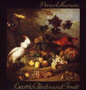 Exotic Birds & Fruit album cover