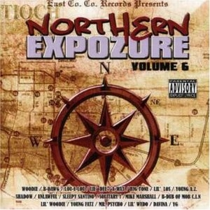 Northern Expozure Vol.6 album cover