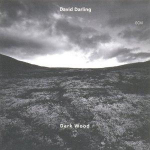 Dark Wood album cover