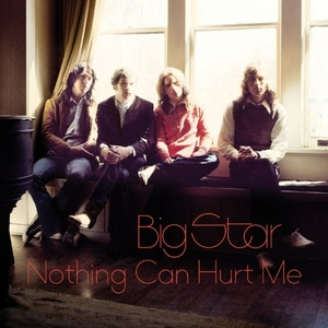 Nothing Can Hurt Me album cover