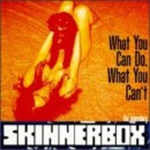 What You Can Do What You Can't album cover