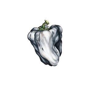 White Pepper album cover