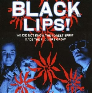 We Did Not Know The Forest Spirit Made The Flowers Grow album cover