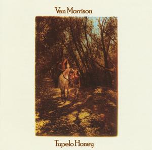 Tupelo Honey album cover