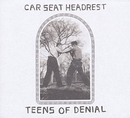 Teens Of Denial album cover