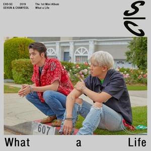 What A Life album cover