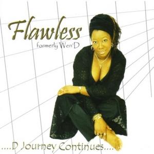D Journey Continues album cover