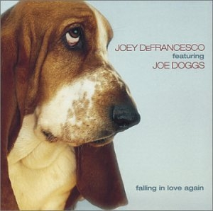 Falling In Love Again album cover